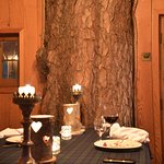 Inside the tree house for an incredible birthday dinner at The Lodge on Loch Goil.