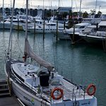 Sailing adventure in Auckland on America's & Lipton Cup tours Auckland City Private Tour go sailing on a real America's Cup boat ©ChauffeuredToursnz North Island New Zealand tour