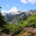 Another view of Mt. Baker from the hiking trail.
