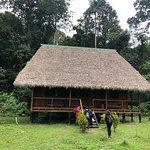 Nuestra cabaña en Chuncho lodge