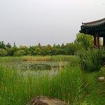 Relaxing Gazebo near the lake