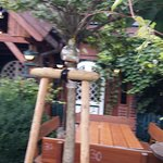 Photo of Spitzerl Biergarten