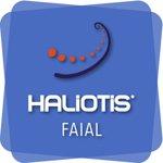 Haliotis Dive Centre & School