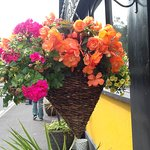 Beautiful hanging baskets surround the exterior