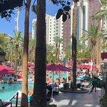 Photo of Flamingo Hotel and Casino