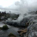 Rotorua - volcanic geysers