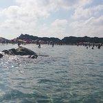 Фотография Spiaggia di Punta Molentis