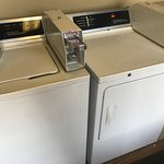 The laundry machines that take $2 per load. You can maybe wash for $2, but it is a minimum of three loads on the dryer to get them dry at $2/load.