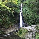 Lydford Gorge-bild