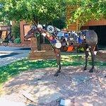ภาพถ่ายของ Painted Pony