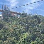 Golden Bridge صورة فوتوغرافية