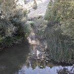 Cañón del Río Lobos
