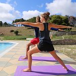 daily yoga classes!
