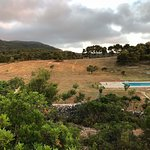 view from our ecofarm and land, we have over 18 hectares for you to explore! Privacy, no other houses in sight!