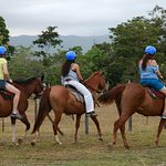Horseback riding Rio Celeste