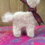 Bowbridge Alpacas Scotland
