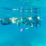 So much to see underwater in the Keys.