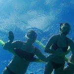 Best way to enjoy the Florida Keys....underwater!