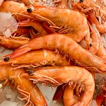 Fresh local king prawnbs