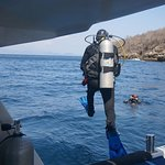 Starting the Dive