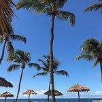 Pineapple Beach Club view