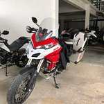 Multistrada 950 with Touratech pack