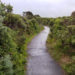 The walkway from the first overlook to the second (a brief 3 min walk), at the London Bridge, Great Ocean Road, Victoria (AUS)