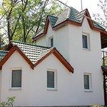 """Гостевая усадьба """"Родовое гнездо"""" с. Гармаки, Винницкая область."""