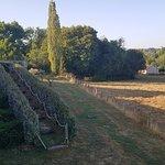 vue sur la terrasse et le champ aux vaches...