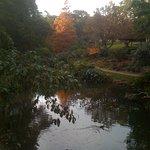 Wollongong Botanic Garden Fotografie