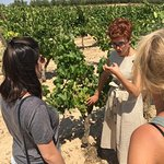 Beth giving very interesting information among the vineyards!