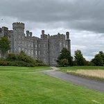 Landscape - Killeen Castle Photo