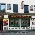 Le BLACK BIRD®의 사진
