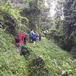 Excursión en cascada Aventura + Cueva en Wat Thum Chiang Dao Viaje privado
