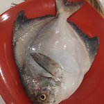 De BlueFin Seafood MultiCuisine Restaurant resmi