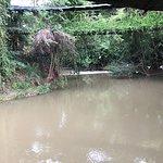 ภาพถ่ายของ บ้านไม้ชายน้ำ