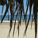 Bild från Costa Costa