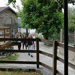 Photo of Crotto del Capraio