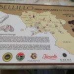 Photo of Bellillo