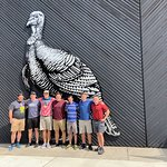 Great group at Wild Turkey---that is a big Bird