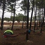 Dreamsea Surf Camp Picture