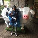ภาพถ่ายของ Cows Ice Cream