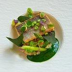 Zeebaars / Paling / Groene kruiden
