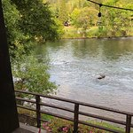 The Rogue River from our table.