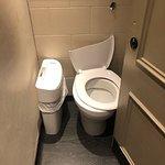 Another broken toilet