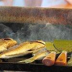 תמונה של Sea Shells