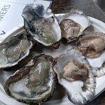 Fotografia lokality Richard Haward's Oysters