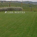 Cava Bertha Foto