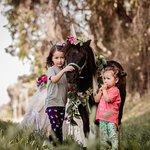 Unicorn Photo Shoots