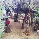 Fotografia lokality Safari Bar
